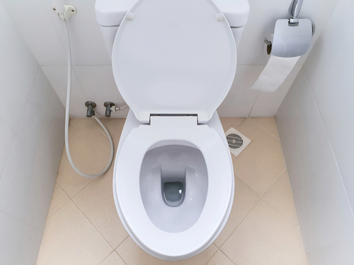 How To Unblock Toilet Without A Plunger?